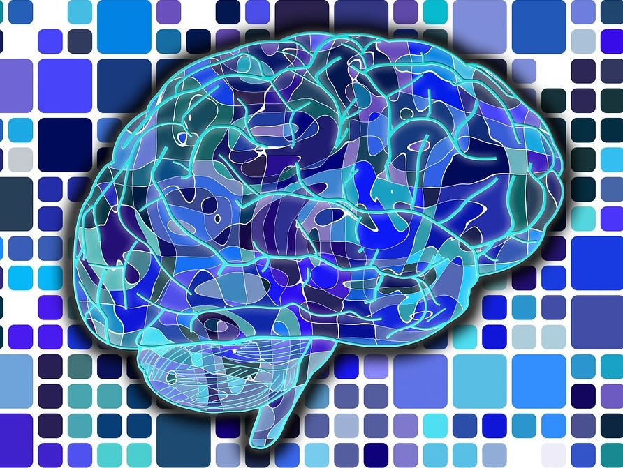 ¿Eres más lógico o creativo?