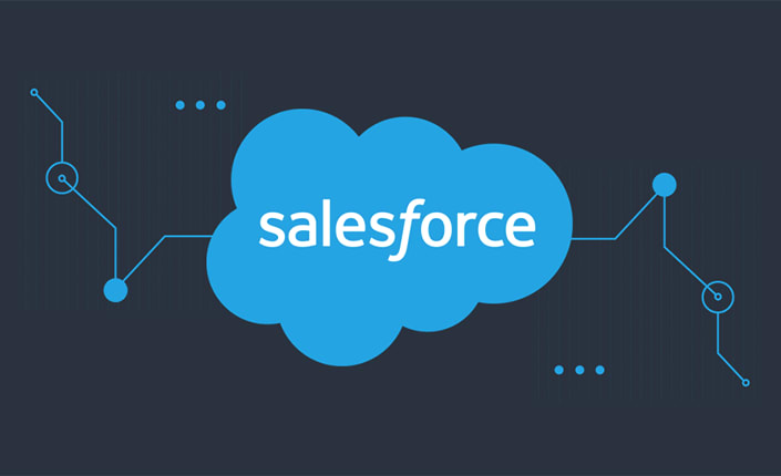 Salesforce survey