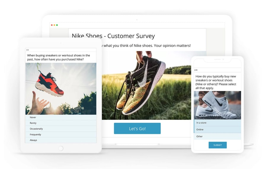 html survey example