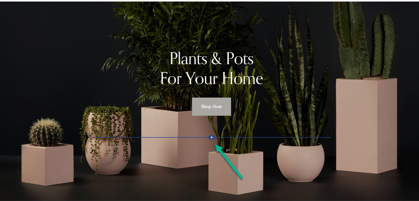 Add a block to your Squarespace site